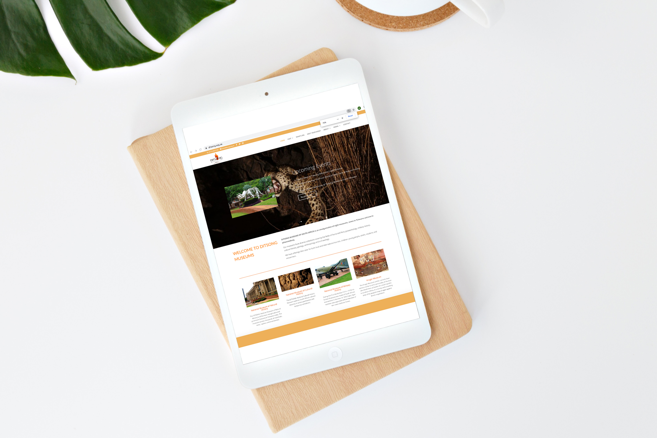 Ditsong-Museums-Website-on-tablet